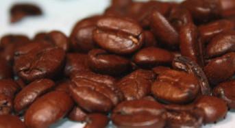 Echter Bohnenkaffee oder Ersatzkaffee?