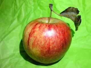 Frisches Obst für Smoothies