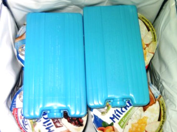 Lebensmittel kühl transportieren hilft Strom sparen