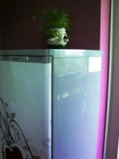 Neuer Anstrich und Kühlschrankfolie