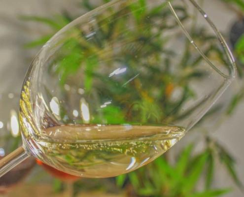Wein und Champagner online bestellen